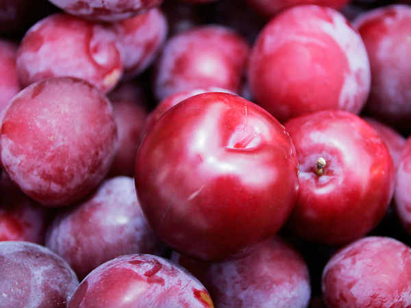 Dry Plum Supplier |Dried Pitted Plums Best Shape for Trades